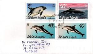 Falkland 150211